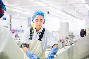 Jeune ouvrière en tenue de travail en train de travailler dans une industrie agroalimentaire
